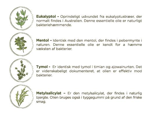 Listerine aktive ingredienser og essentielle olier - LISTERINE® Mundskyl